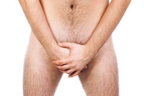gennemsnitlig penis i inches